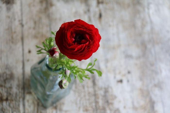 Les 6 fleurs les + économiques pour ton mariage 💐 5