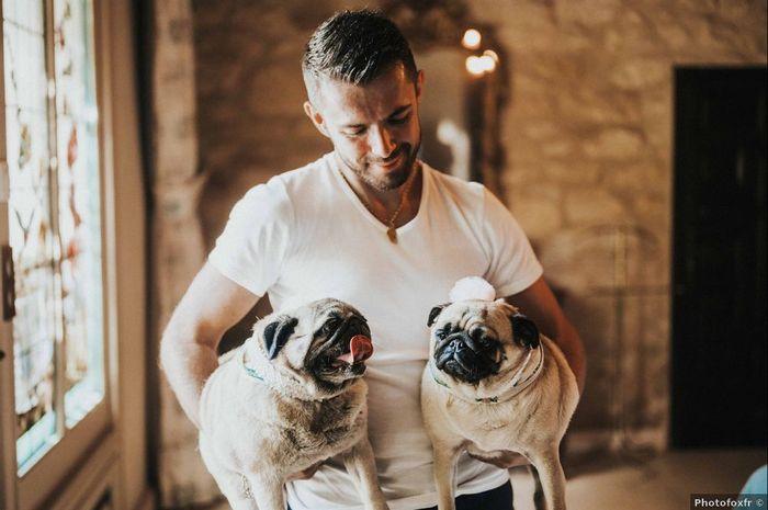 Des photos avec vos chiens ? 🐶 1