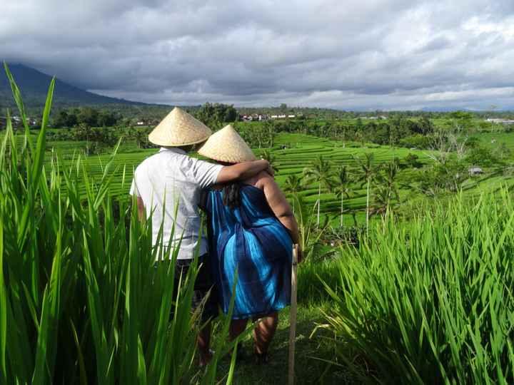 VDN - BALI - Jatiluwih Rice terrace
