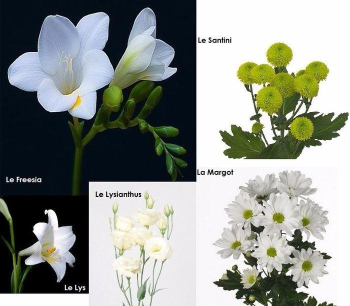 Le choix des fleurs - Devis fleuriste