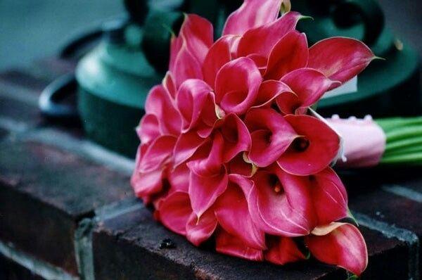 Mariées de septembre/ octobre, comment sont vos bouquets - 2