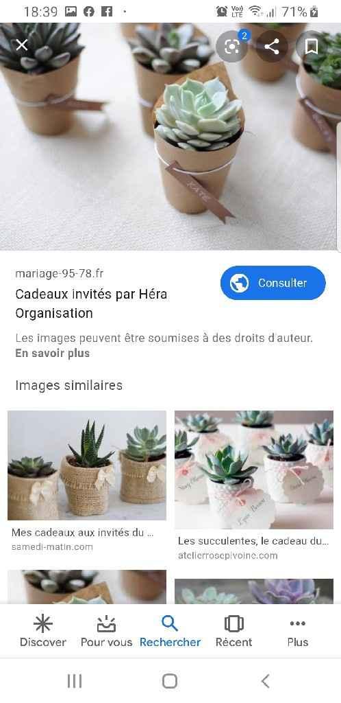 Succulentes - cadeaux invités - 1