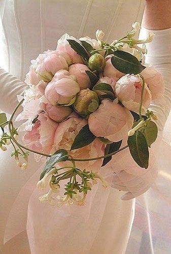 quelles fleurs avez vous choisies pour votre mariage page 4 d coration forum. Black Bedroom Furniture Sets. Home Design Ideas