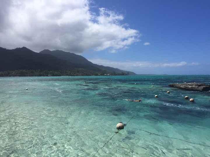 Honeymoon  en Polynésie - 3