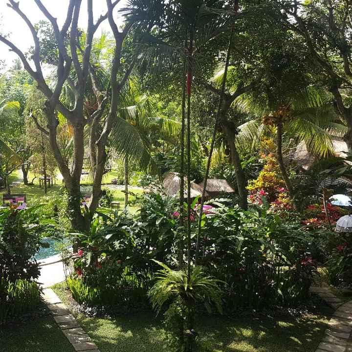 Voyage de noces à Bali, vos avis - 2
