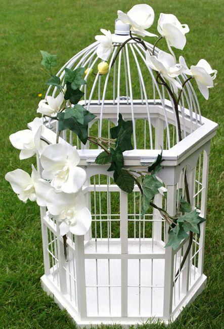 recherche urne cage oiseau d coration forum. Black Bedroom Furniture Sets. Home Design Ideas