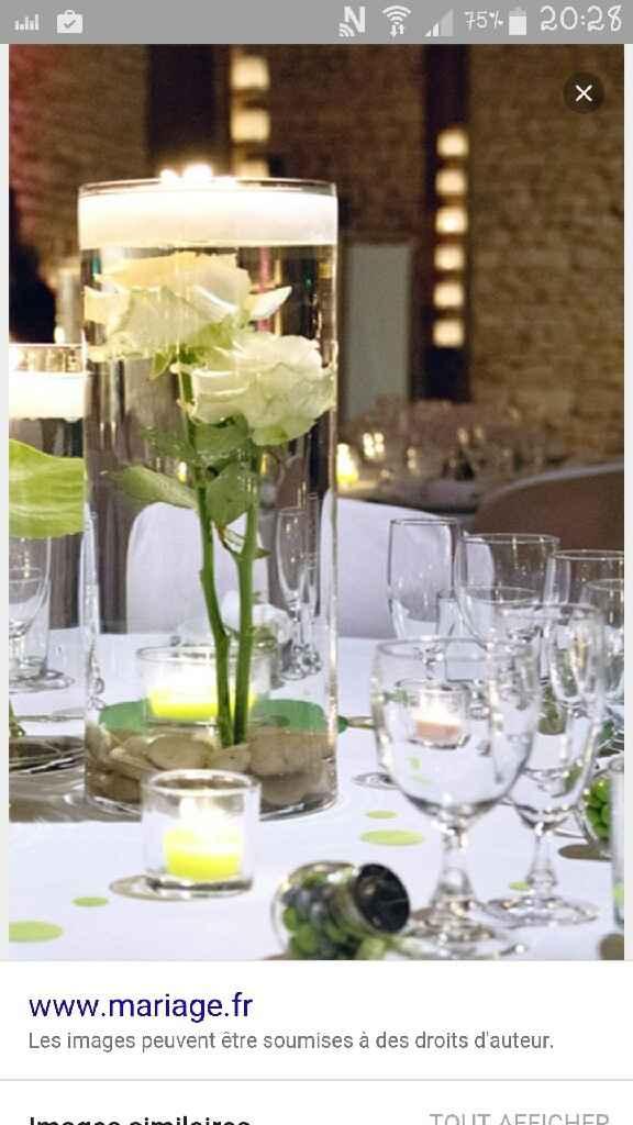 Besoin d'idées avec ces vases ... - 7