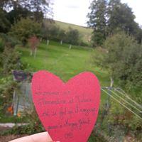 Love notes pour mon chéri - 1