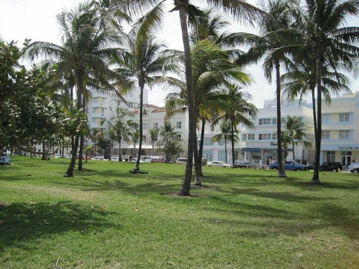 Miami - bahamas - 4