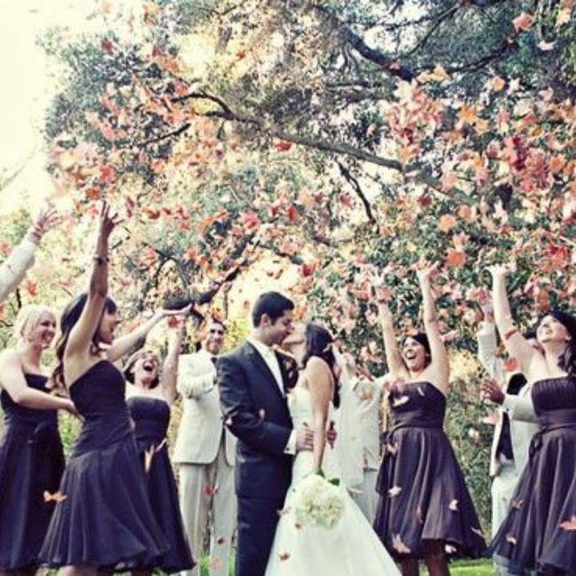 Que lancer pour la sortie des mariés? 4