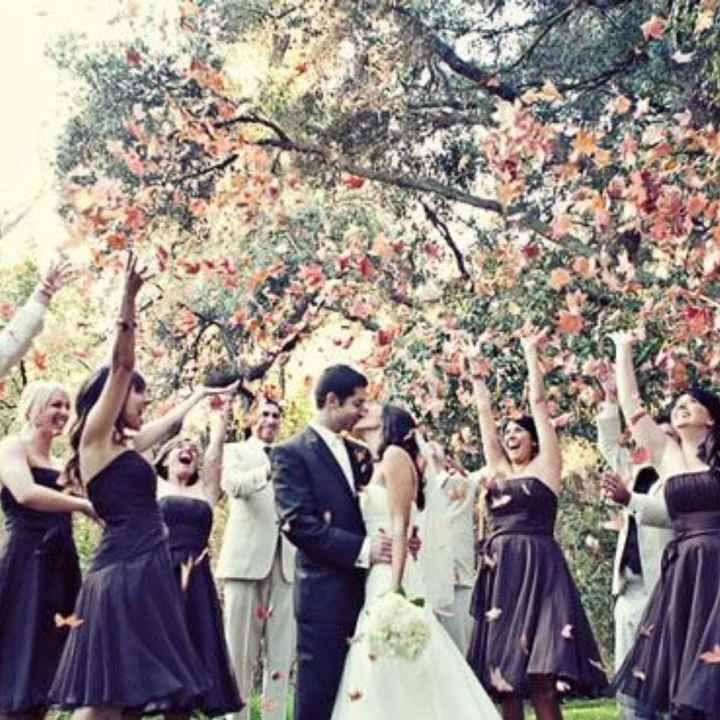 Que lancer pour la sortie des mariés? - 4