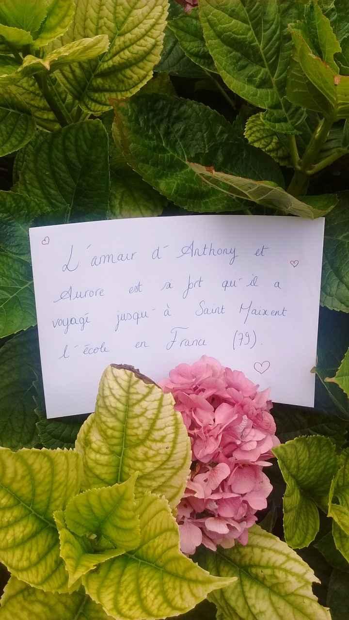 Love Note Aurore
