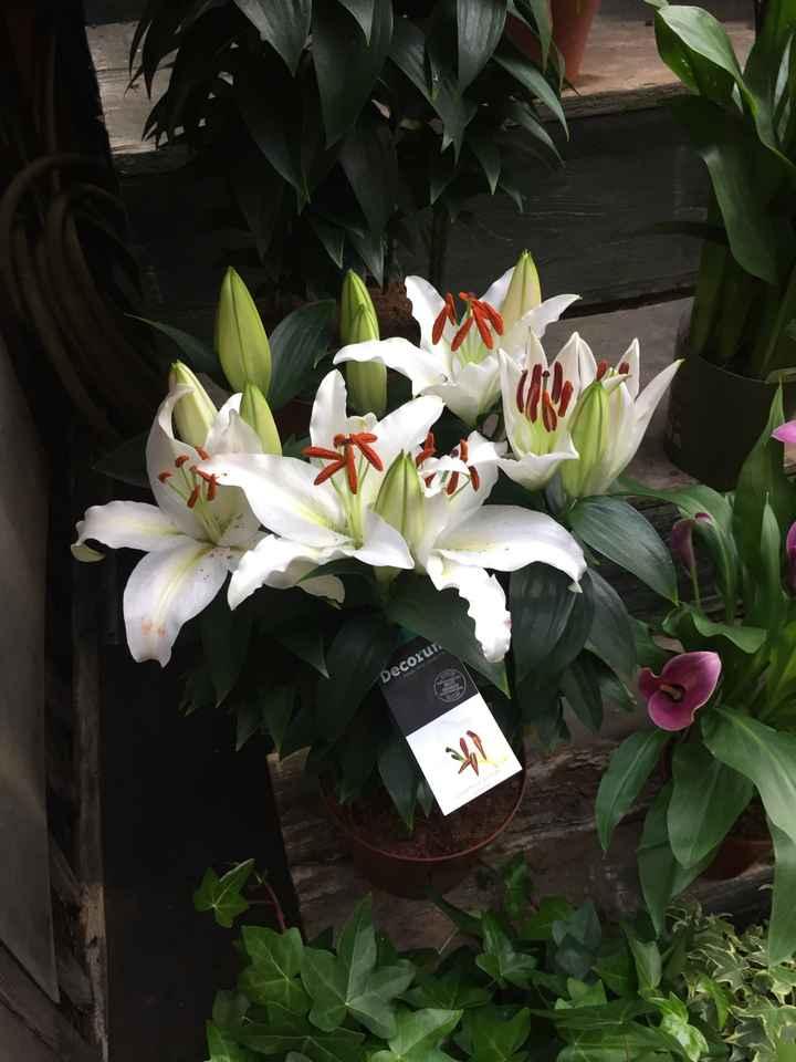 Inspiration fleurs blanches et bleues - 5