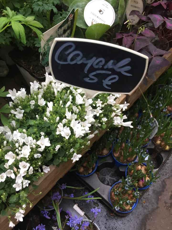 Inspiration fleurs blanches et bleues - 7