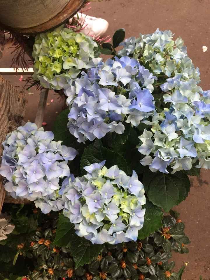 Inspiration fleurs blanches et bleues - 8