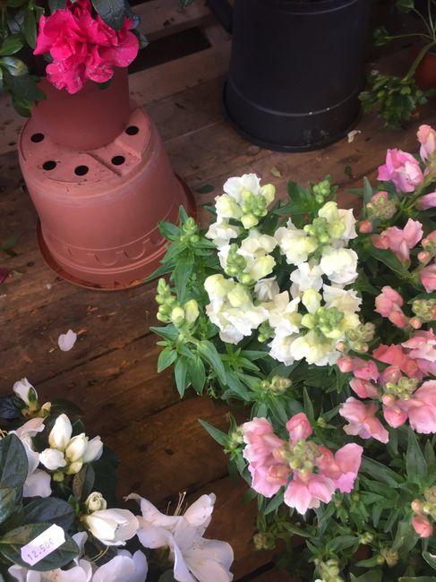 Inspiration fleurs blanches et bleues - 2