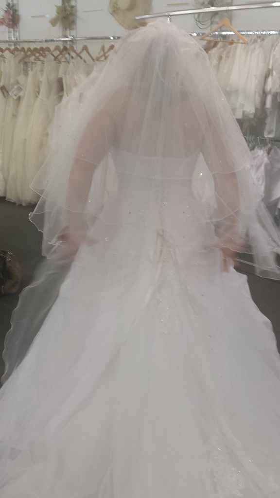 Arrière de la deuxième robe