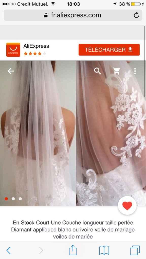 Chaussure et voile pour robe ivoire - 2