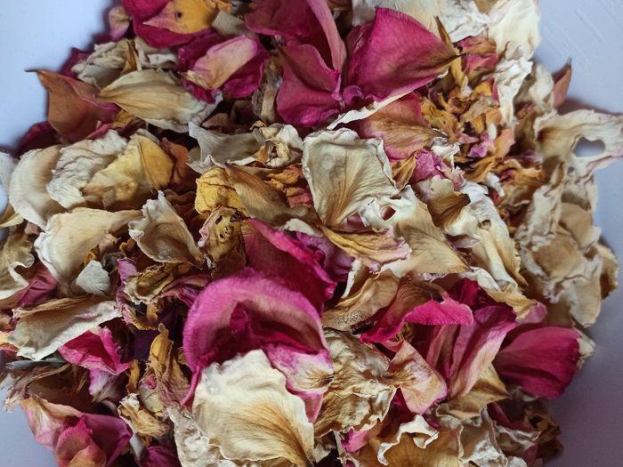 Pétales de roses séchées 1