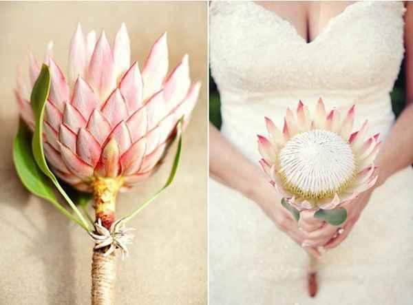 Couleurs bouquet robe Champagne dentelle ivoire 9