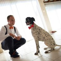 Mon chéri et sa chienne