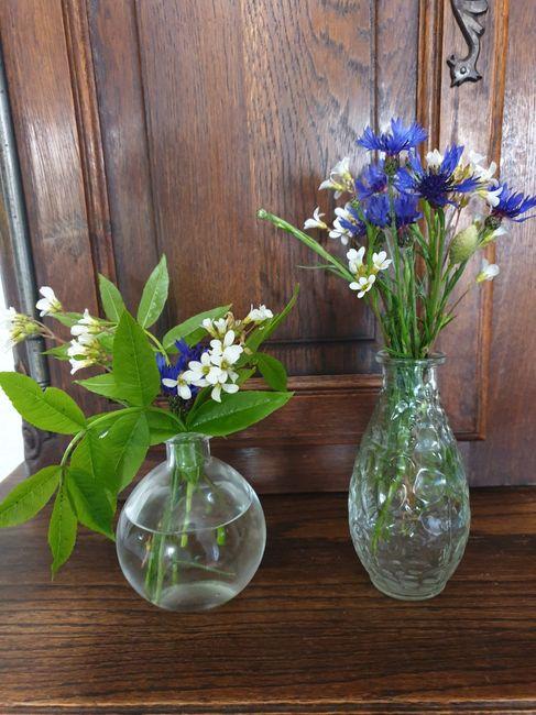 Retour d'expérience : quelle taille de vase ? 4