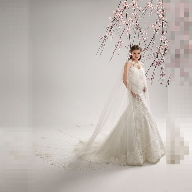 cape de mariage page 2 mode nuptiale forum. Black Bedroom Furniture Sets. Home Design Ideas