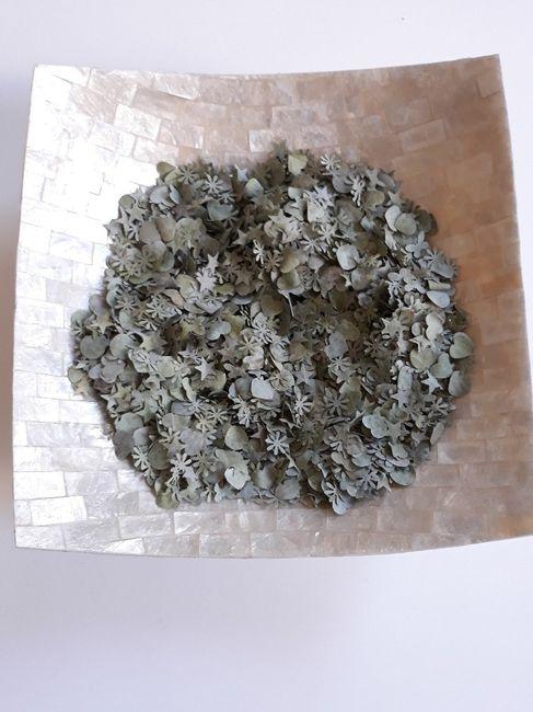 Confettis biodégradables 3