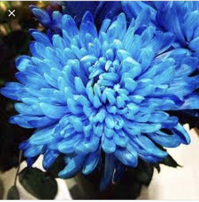 Mon bouquet sera composé de ____ 3