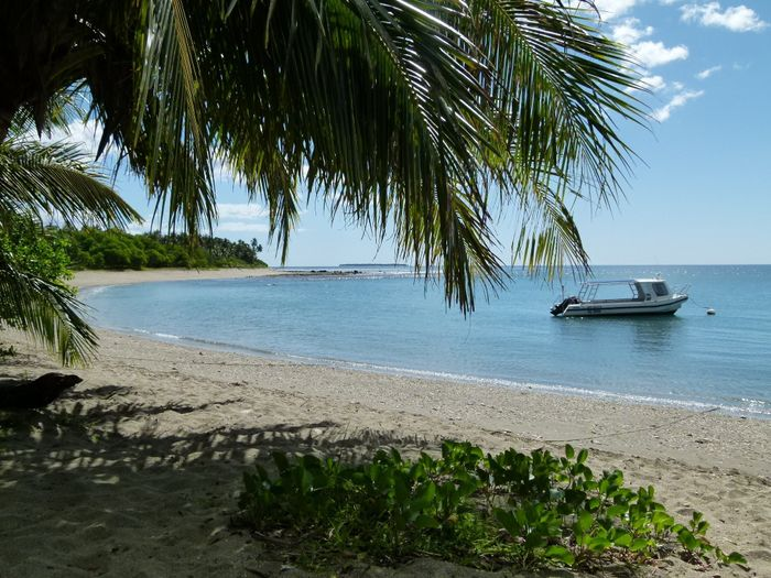 Nouvelle Calédonie - Photo Après le mariage