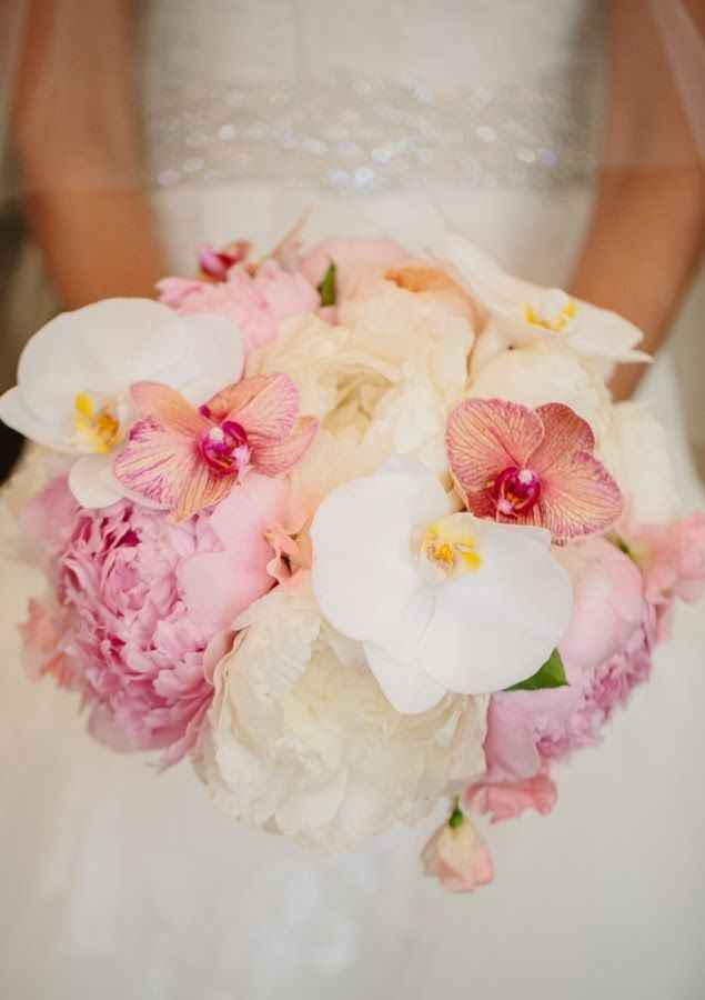 Exotique blanc et rose