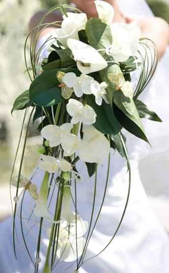 Exotique Orchidée Blanche
