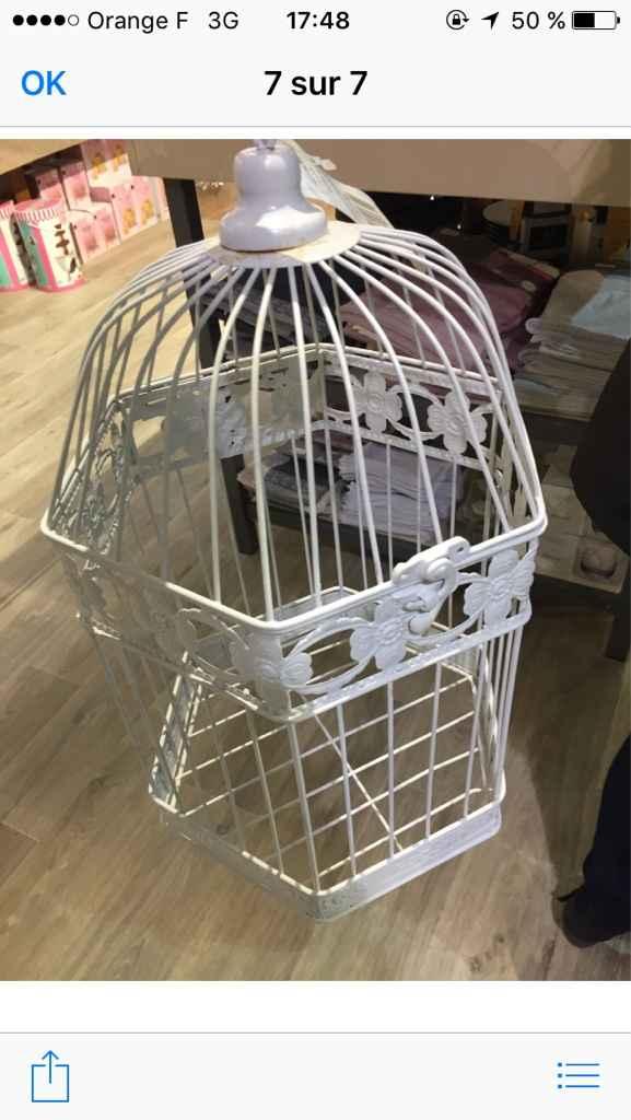 Montrez moi vos urne cage à oiseau - 1