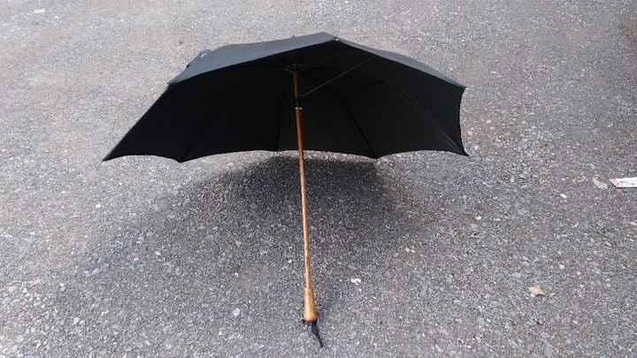 Parapluie transparent Lidl - 2
