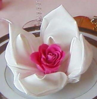 serviette lotus photo d coration. Black Bedroom Furniture Sets. Home Design Ideas