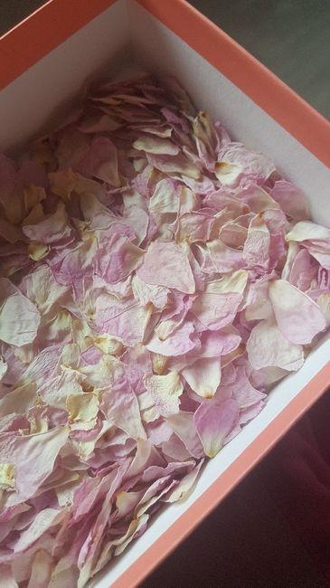 Pétales de roses séchées 4