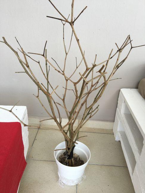 Mon arbre à dragées diy - 2