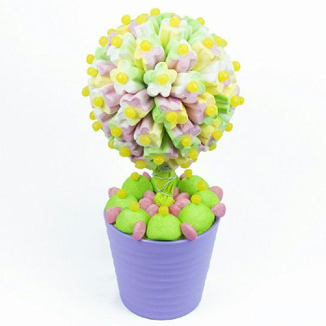 Les arbres à bonbon - 4