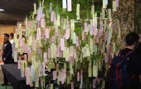 Apr s le livre d 39 or l 39 arbre souhaits 8 photo d coration - L arbre a souhait ...