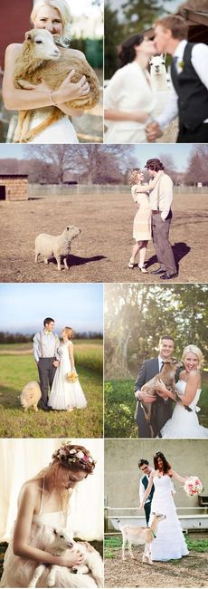 mariage agriculture