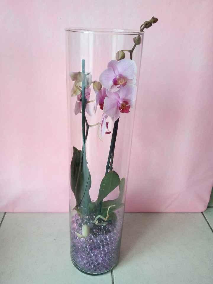 orchidée avec perles d'eau