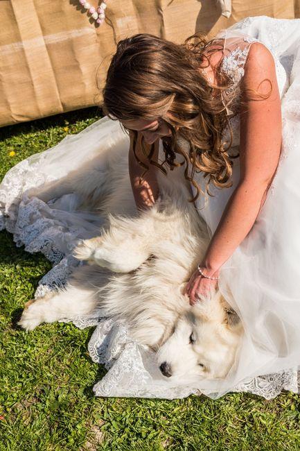 Séance photo avec vos animaux ? 6