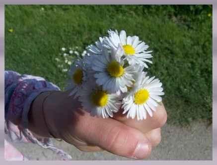 Le bouquet version chéri !