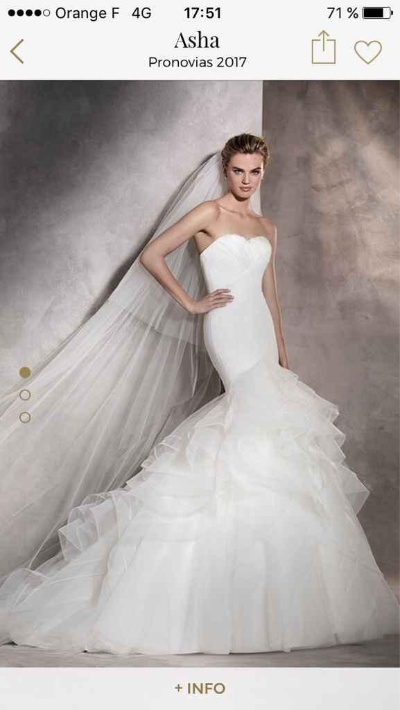 La robe de mes rêves - 1