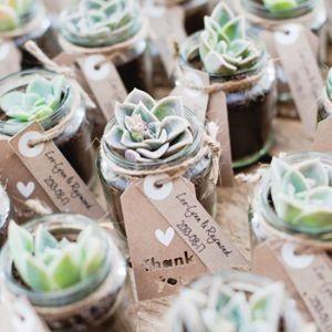 Cadeaux invités succulentes 2