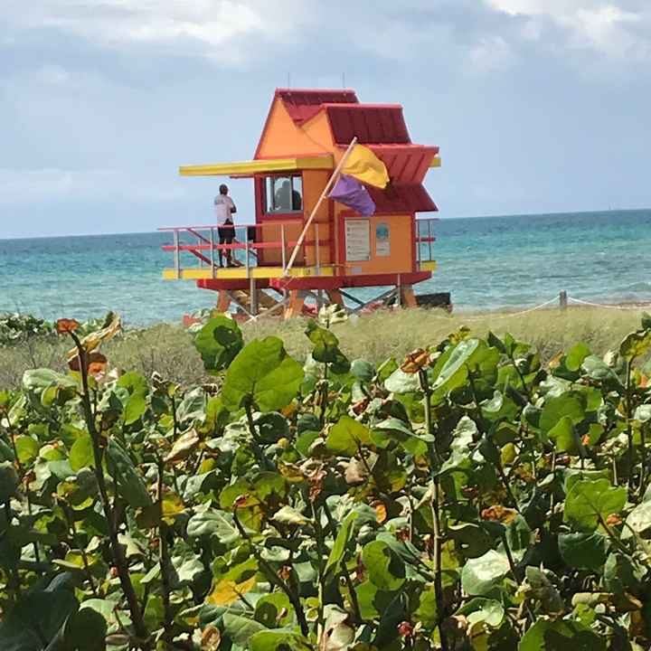 Voyage de noces en Floride: le récit - 1
