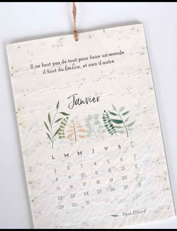 Du papier ensemencé (faire part, carte de remerciement ...) - 4