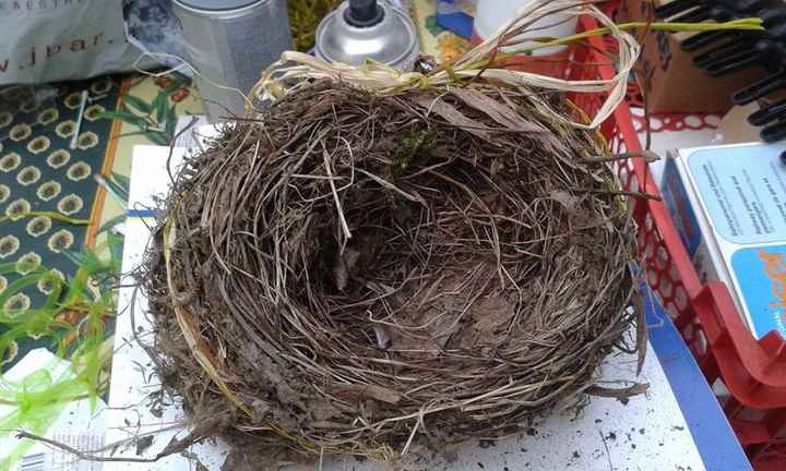 nid qui portera nos alliances (pas encore décoré)