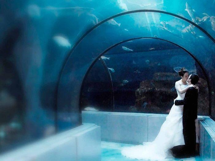 lieux insolites pour se marier organisation du mariage forum. Black Bedroom Furniture Sets. Home Design Ideas