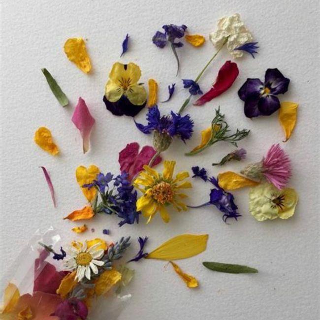 Pétales de fleurs séchées 🌸 5